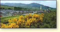 Picture: Balblair Distillery, Ross-shire
